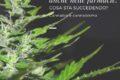 Cannabis venduta anche nelle farmacie. Cosa sta succedendo?