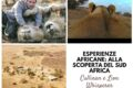 Esperienze africane: alla scoperta del Sud Africa (parte 2)