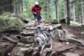 Dog trekking: come restare in forma senza trascurare il proprio cane