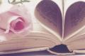 Quattro libri rosa che vi conquisteranno!