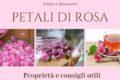 Petali di rosa: tutti i poteri benefici del fiore più romantico al mondo