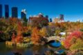 Central Park in Autunno: Un fascino senza tempo