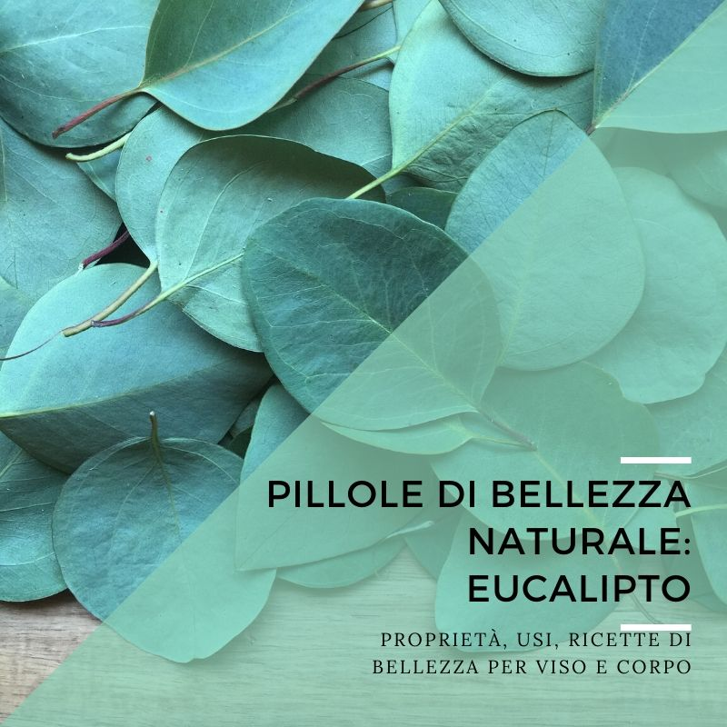 Pillole di bellezza naturale: eucalipto