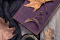 Novembre da leggere: consigli e nuove uscite per nuove letture