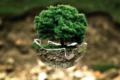 Google contro l'inquinamento atmosferico: verso un futuro sempre più sostenibile