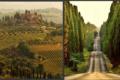 Le strade del vino sulla Costa degli Etruschi