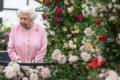 Pic Nic a Buckingham Palace: per la prima volta nella storia è possibile
